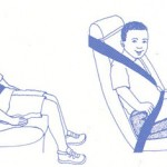 <b>Car seat laws in Florida</b>