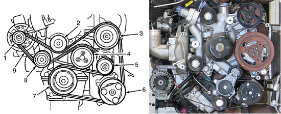 Ford serpentine belt diagrams