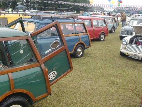 Mini Wagon