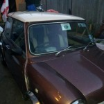 <b>Mini with special body color that blinks</b>